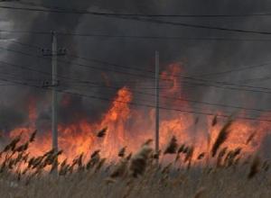 За поджоги сухой травы в Волгодонске можно получить крупный штраф