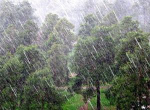 Очень сильный ливневый дождь обрушится на Волгодонск в вечерние часы