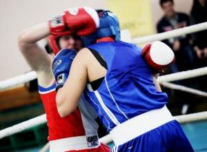 Представительницы прекрасной половины человечества из Волгодонска стали призерами на первенстве по боксу