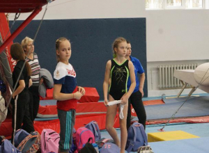 Команда из Волгодонска заняла второе место в областном турнире по спортивной гимнастике