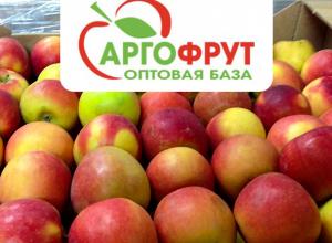 Свежие фрукты и овощи на новогодний стол без лишних затрат от «АргоФрут»