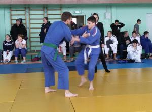 Две золотые медали привезли с турнира волгодонские дзюдоисты
