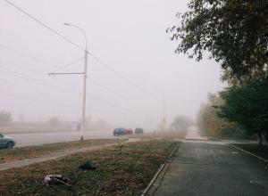 Дождливым и туманным будет воскресный день в Волгодонске