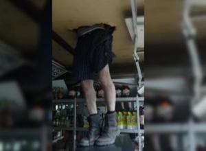 Миссия невыполнима: Неудачливые грабители разворотили крышу рыболовного павильона и не смогли сбежать от полицейских Волгодонска
