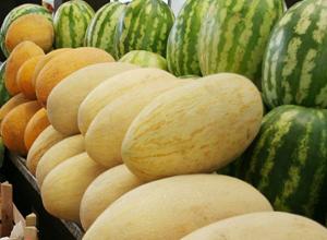Волгодонцам рассказали, как правильно выбирать арбуз или дыню, чтобы не отравиться