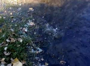 Бьющий из-под земли «гейзер» затопил пешеходную дорожку на Энтузиастов в Волгодонске