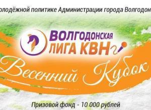15 команд примут участие в Весеннем Кубке Волгодонской лиги КВН