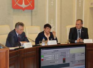 18 мармеладных депутатов гордумы Волгодонска: кто они?