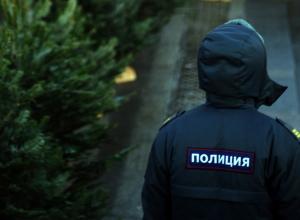 Драки, разбой и кражи стали основными преступлениями в новогодние праздники в Волгодонске