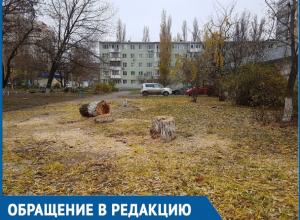 Спилили тополя и вербы, которые мы сажали своими руками, - житель Волгодонска