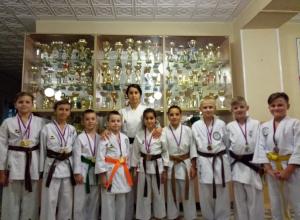 Волгодонские каратисты завоевали более 30 призовых мест на турнире Федерации боевых искусств