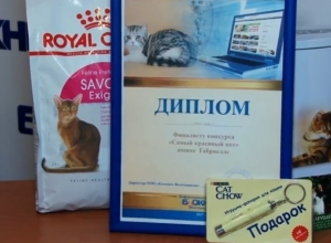 Кокос, Боня и Габиша получили именные дипломы и подарки от Ветеринарного Центра