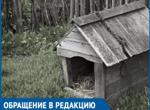 В дверь была воткнута квитанция на оплату штрафа и лежал мертвый пес, - женщина хочет найти виновного в смерти ее любимца