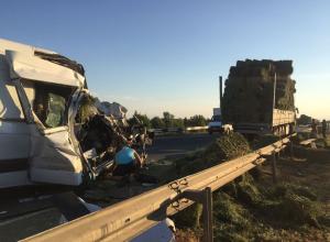 Пассажирка «Мерседеса» погибла в страшном ДТП