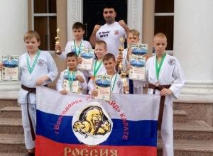 Каратисты из Волгодонска привезли домой девять медалей с Международных соревнований