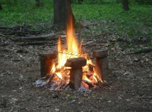 За жарку шашлыка и разжигание костров в Волгодонском районе можно заработать штраф
