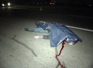 Бродившего по трассе бомжа насмерть сбил ВАЗ-21144