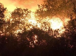 Бывшая диско-площадка «Поляна» на окраине Волгодонска сгорела в ночном пожаре