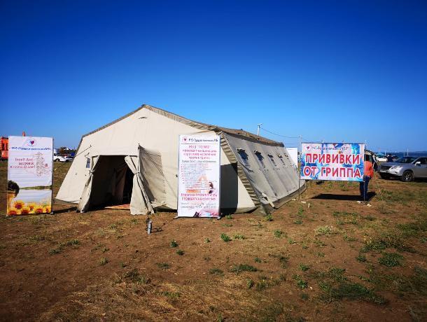 640 волгодонцев приняли участие в акции «Тихий дон – здоровье в каждый дом!» в День города