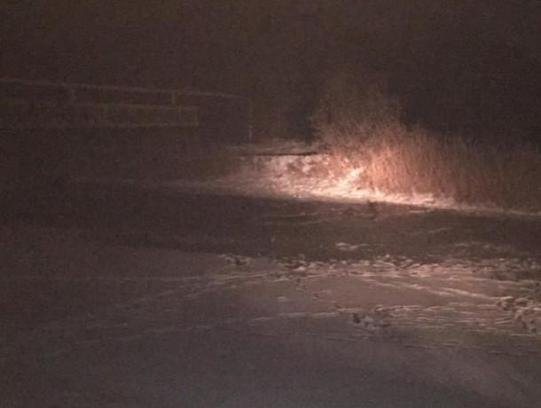 Девятилетняя девочка утонула в реке недалеко от Волгодонска