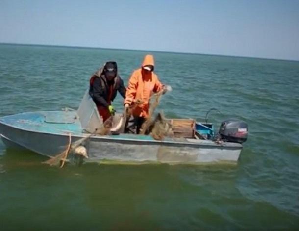 Минсельхоз ограничил вылов рыбы в Цимлянском водохранилище