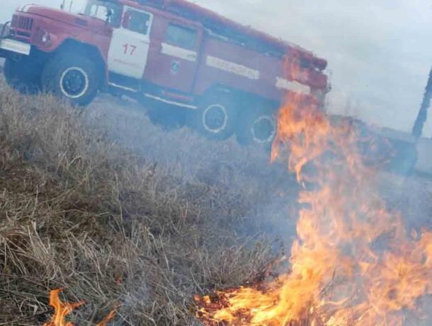Битое стекло и мусор могут стать причиной пожаров: волгодонцев предупреждают о высокой пожароопасности