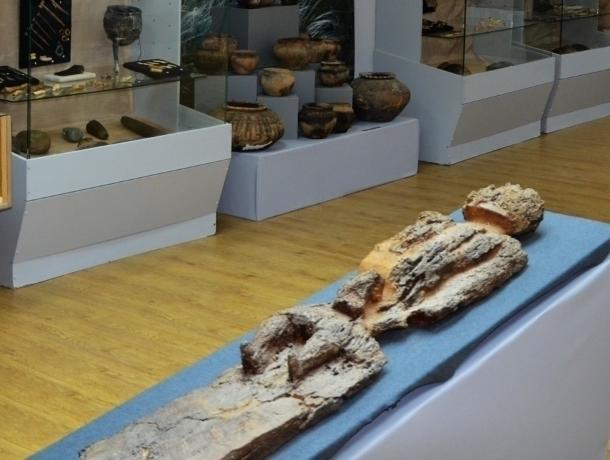 Волгодонск получил право провести масштабный музейный фестиваль