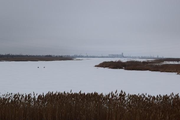Что произошло с уровнем Цимлянского водохранилища под Новый год