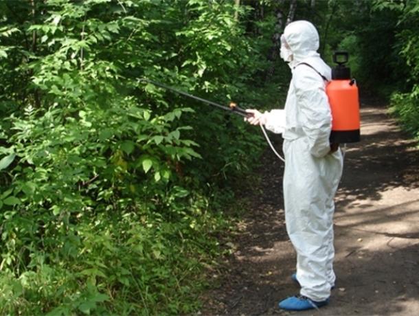 В Волгодонске завершился первый этап обработки против клещей