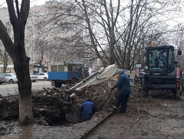 «Коммуникации не подпустили»: сотрудникам «Водоканала» пришлось спилить два дерева