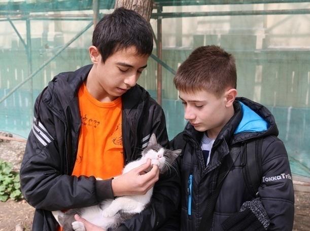 Отважные волгодонцы спасли попавшего в беду котенка по пути на кинофестиваль в Волгограде