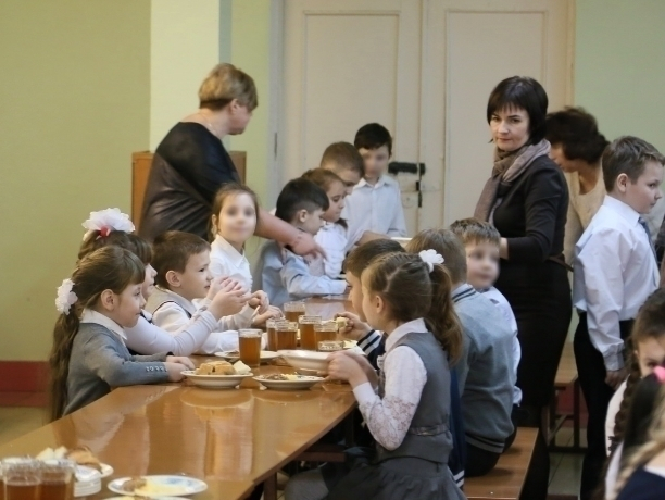 Скандальные договоры на поставку школьного питания расторгли в Волгодонске