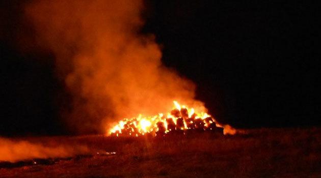 В Мартыновском районе пожар уничтожил 145 тонн сена