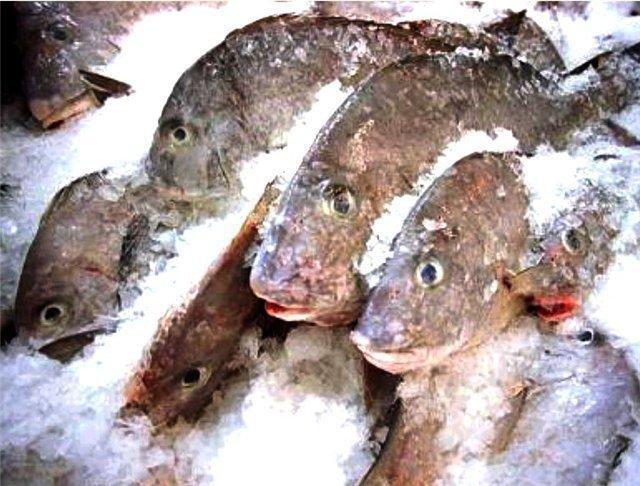 В волгодонских магазинах продается опасная для здоровья рыба