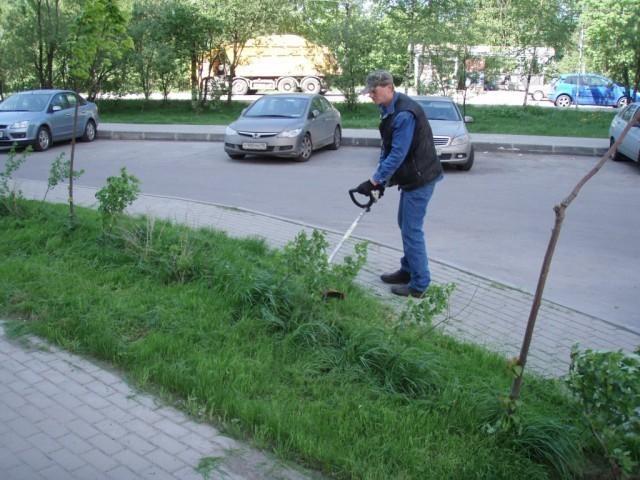 Волгодонские власти хотят сменить подрядчика по покосу травы