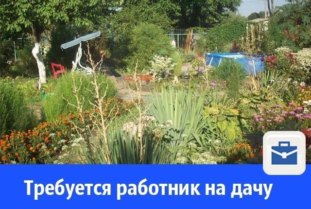 В Волгодонске ищут работников на дачу