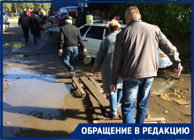 Волгодонцы сравнили дорогу к центральному рынку со знаменитой басней про баранов