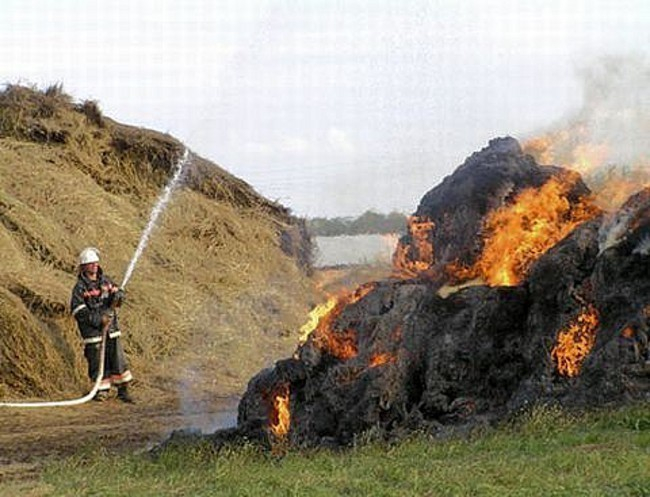 В Мартыновском районе сгорел сеновал