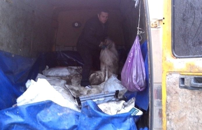На въезде в Волгодонск задержали «Газель», забитую свежей рыбой