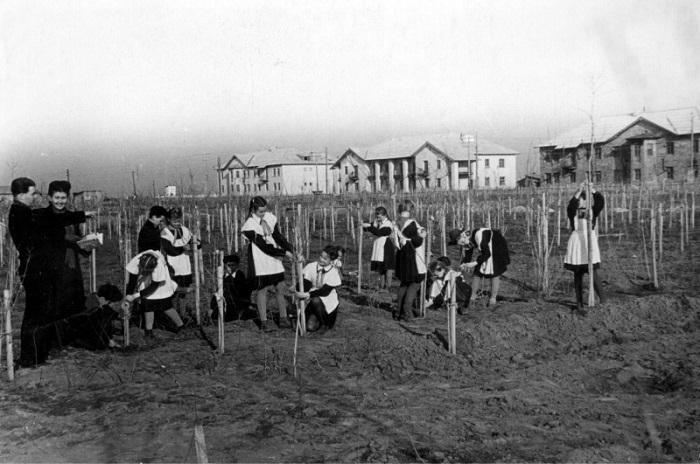 Волгодонск прежде и теперь: парк Юность