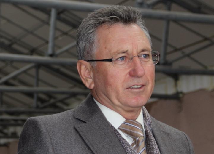 Виктор Мельников потребовал посадку деревьев в Волгодонске, как в Европе