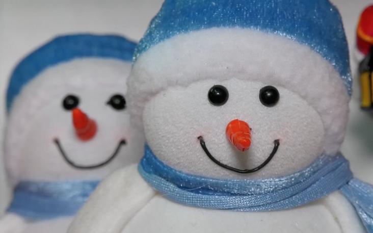 Пушистые елки и игрушечные снеговики создадут новогоднее настроение волгодонцам, несмотря на плюсовую температуру за окном
