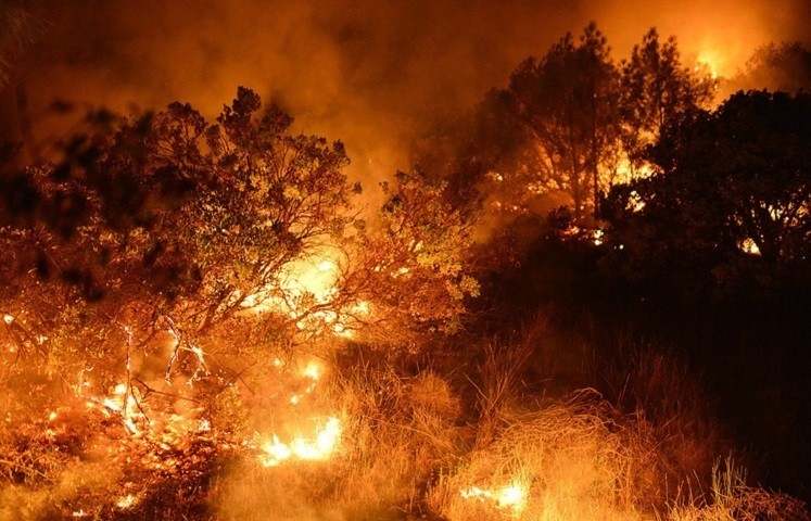 МЧС: в течение трех дней под Волгодонском ожидается чрезвычайная пожароопасность