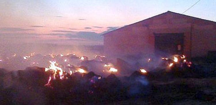 В Мартыновском районе выгорело несколько десятков кубометров сена