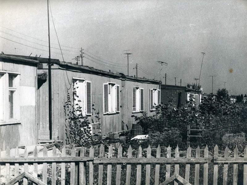 Где находились знаменитые трущобы Волгодонска
