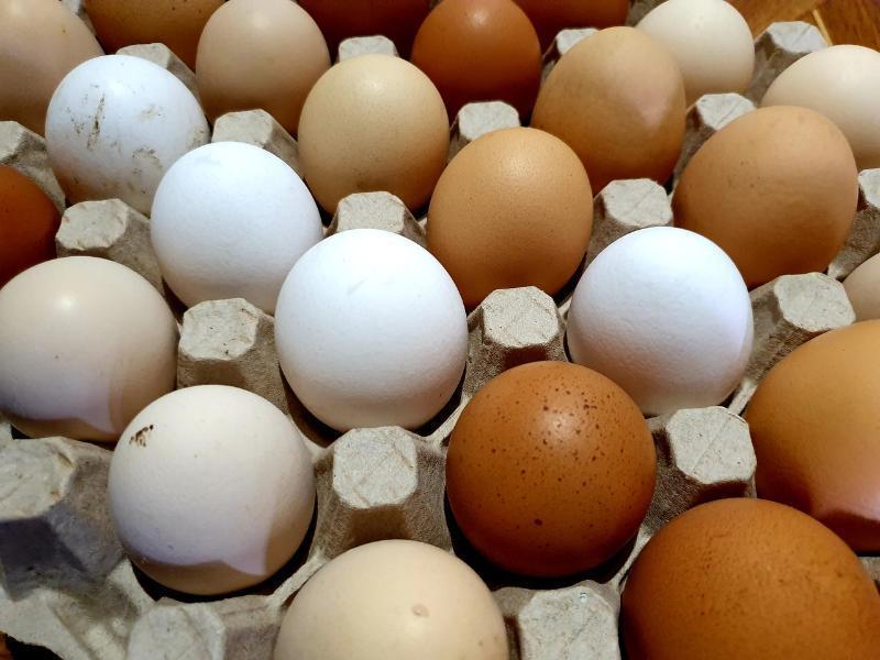 За месяц в Волгодонске поднялись цены на яйца