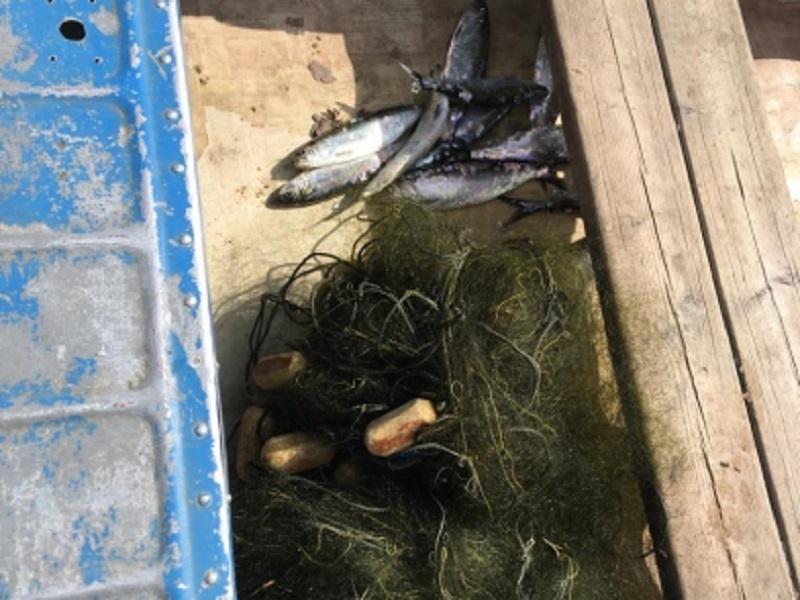 Браконьер из Волгограда опустошил водохранилище у Волгодонска