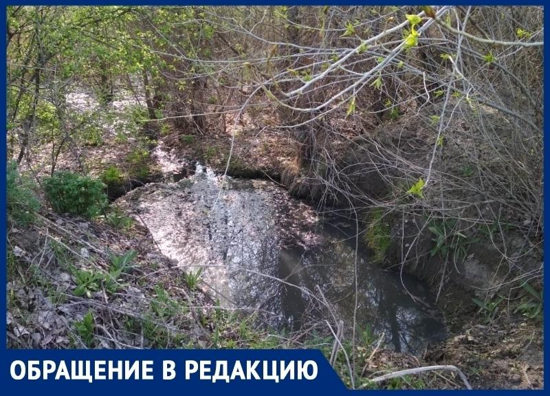 Зловонное озеро с фекалиями обнаружил мужчина в станице Романовской