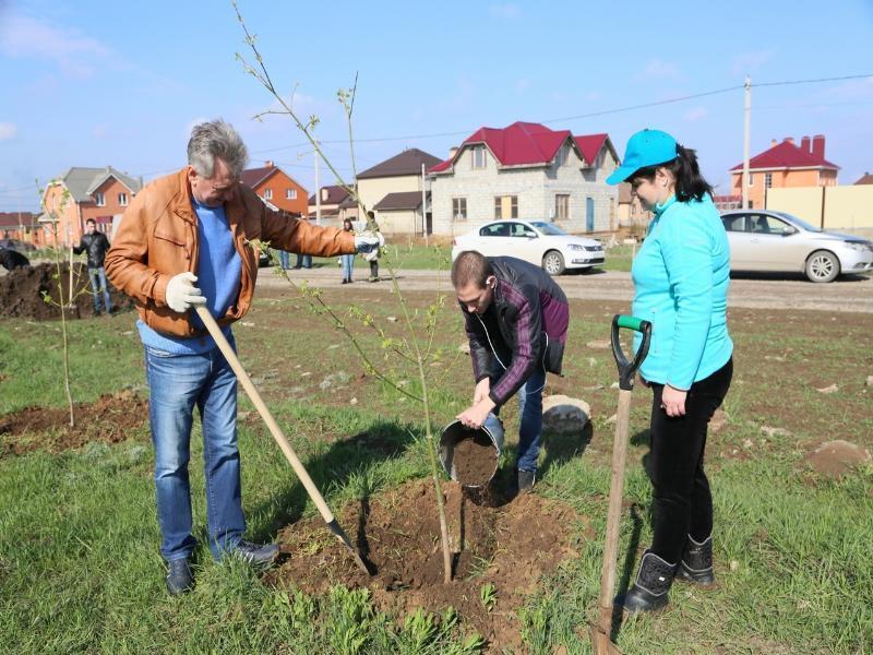 Волгодонск приступил к весенней посадке деревьев
