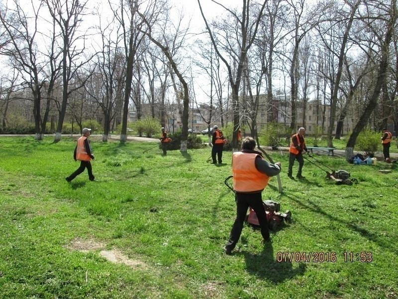 Ранняя весна в Волгодонске выгнала на улицы газонокосильщиков